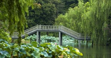 Hangzhou: The Heavenly City